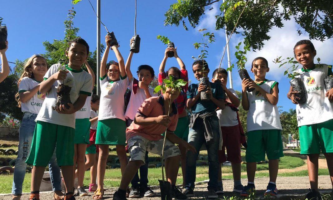 Prefeitura de Caruaru faz plantio de mudas nos parques urbanos do município