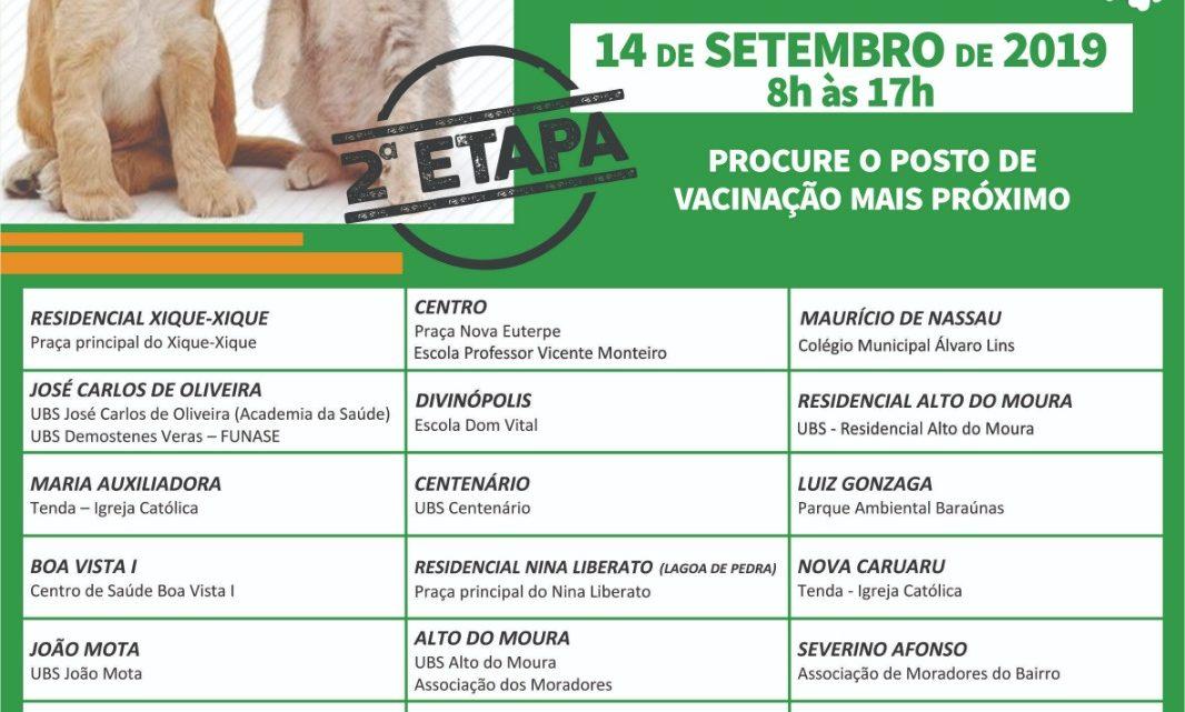 Segunda etapa da vacinação antirrábica em Caruaru será sábado (14)