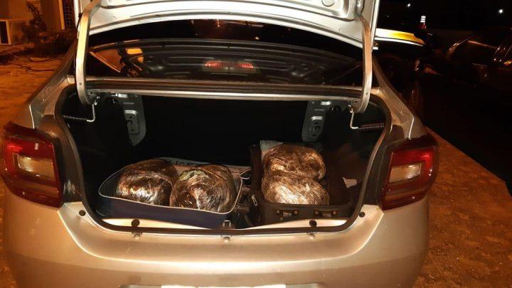 Quatro pessoas são detidas por tráfico de drogas na BR 232 em Gravatá