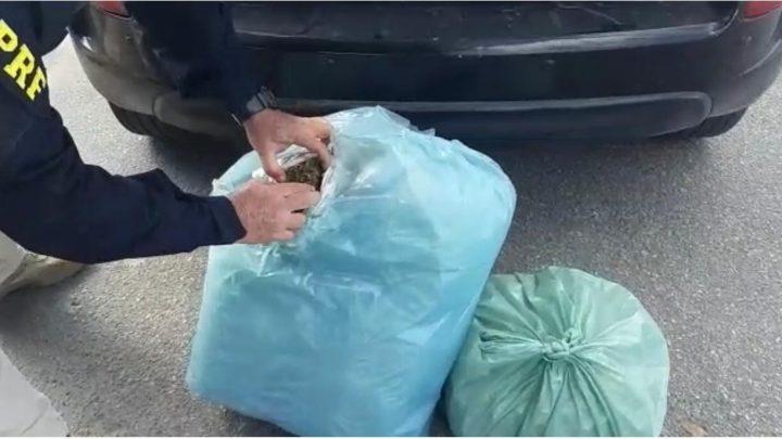 Motorista é detido com 13 Kg de maconha BR 232 em São Caitano