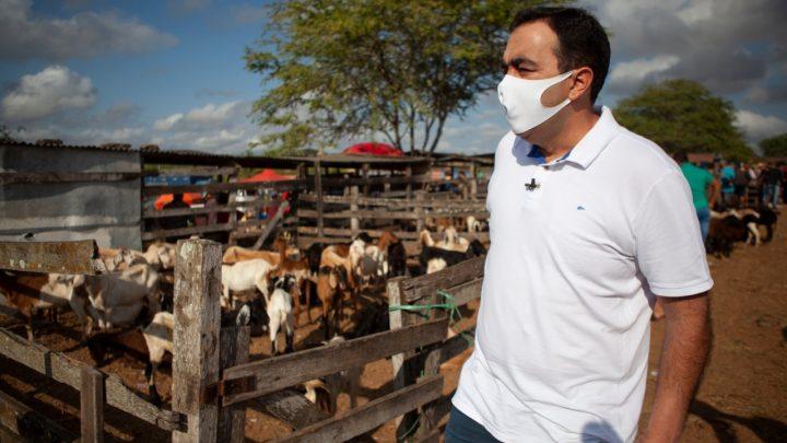 Marcelo Gomes vai à Feira de Gado de Caruaru e debate com comerciantes problemas encontrados no local