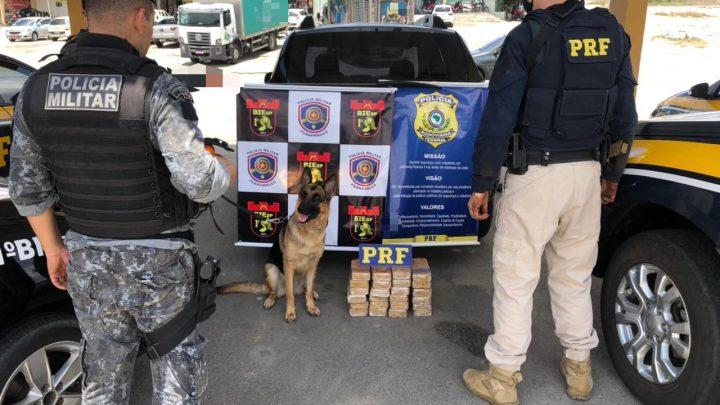 PRF e PM apreendem 24,5 Kg de pasta base de cocaína dentro de carroceria de utilitário em São Caitano