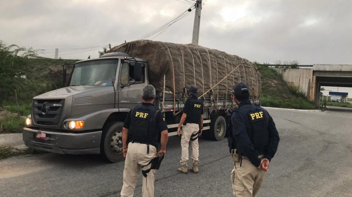 PRF recolhe cerca de 200 veículos irregulares durante Operação Maio Amarelo no Agreste-PE
